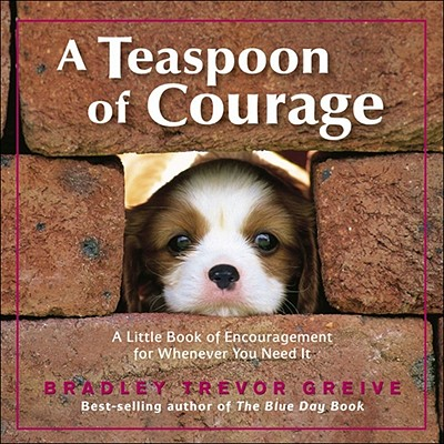 A Teaspoon of Courage By Greive, Bradley Trevor